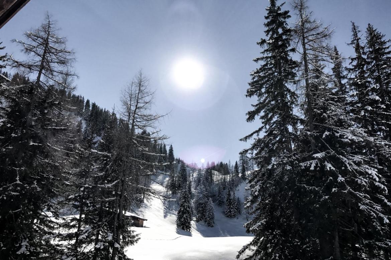 Wald Skigebiet Lofer