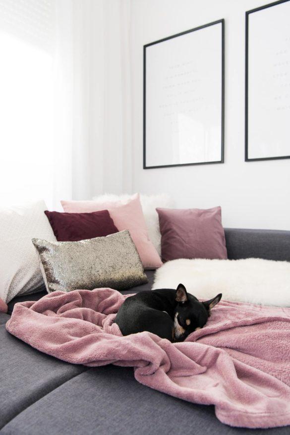 Sofa beerenfarbige Kissen, gold und weiß