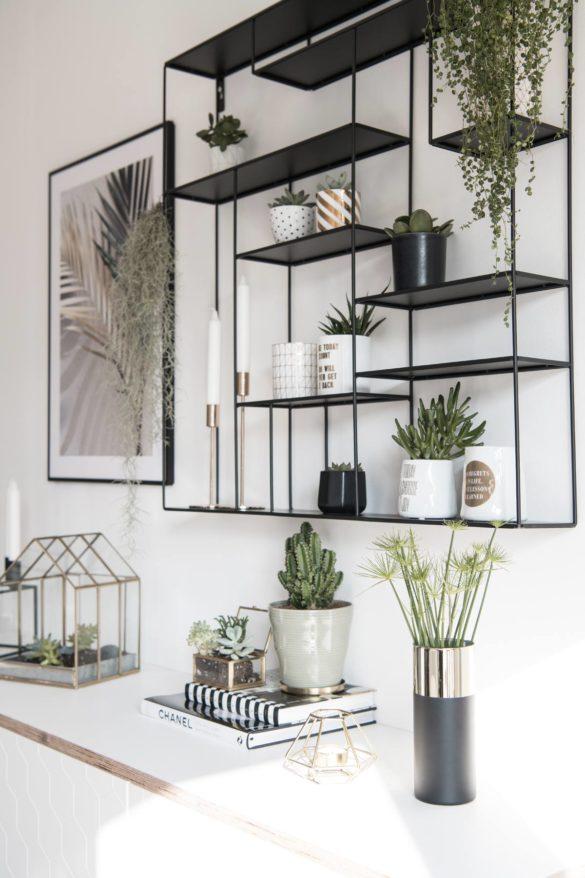 Wandregal mit Sukkulenten und Pflanzen